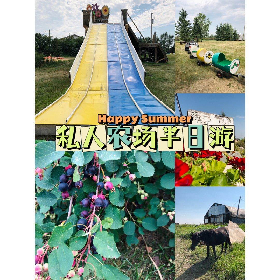 私人农场游乐🎢蔬果动物游玩全都有了...