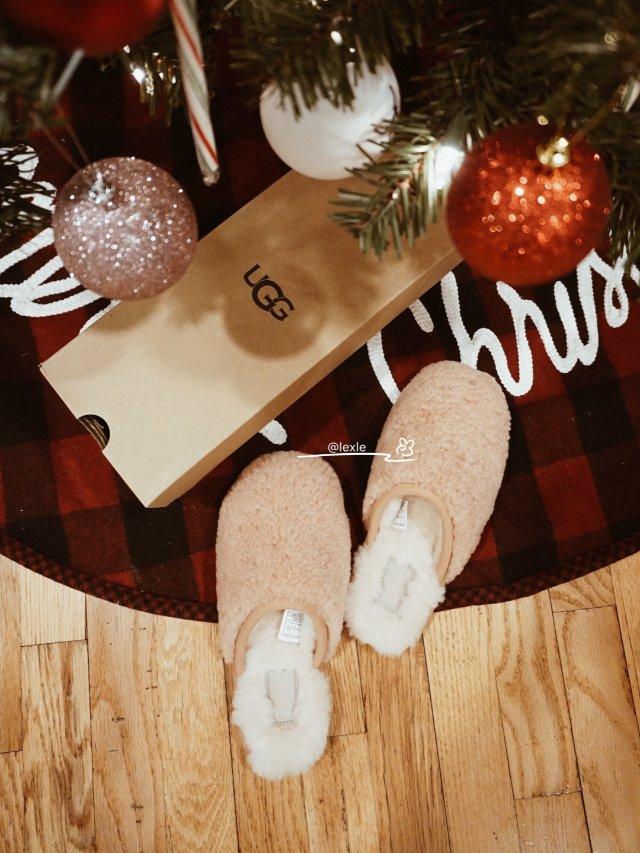 🎄圣诞礼物🎁⑥┏(^ω^)=