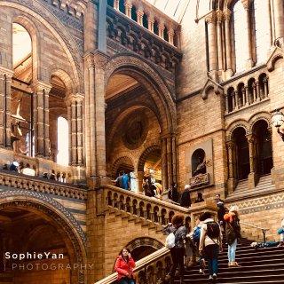 伦敦博物馆   自然历史博物馆超级美...