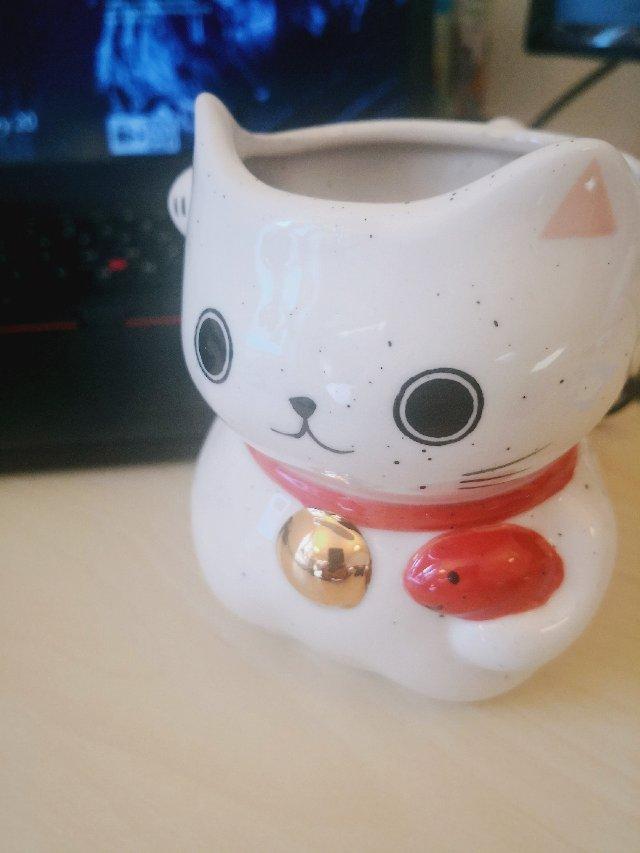 招财猫猫杯