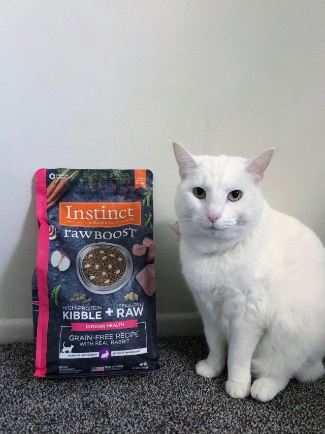 Instinct猫粮❤️黑五帳君君付?!