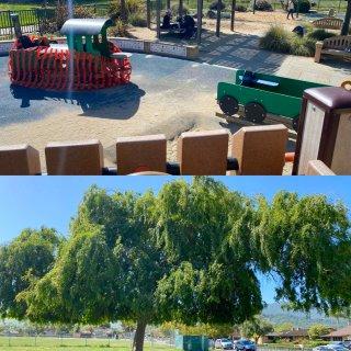遛娃日常 社区小公园 可玩水玩沙和攀爬...