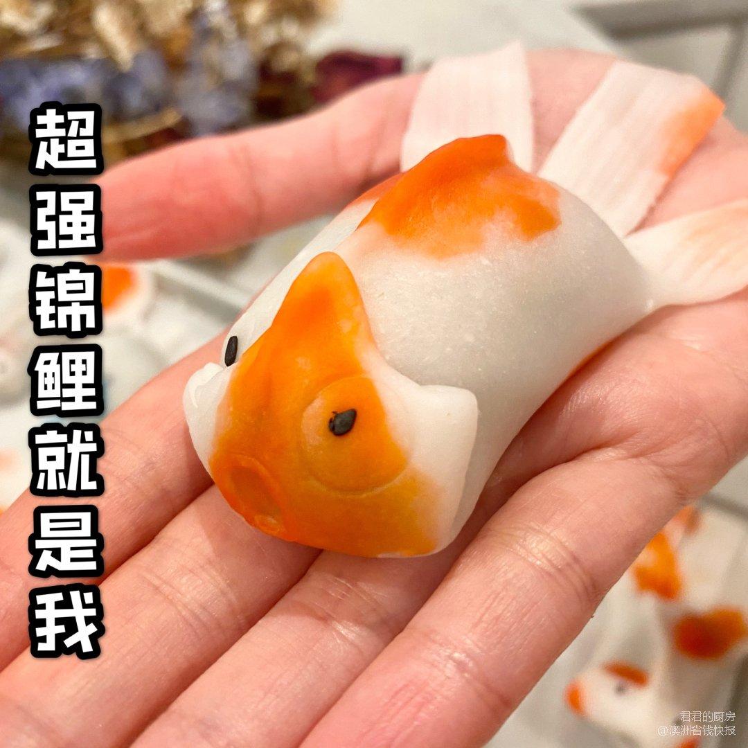 新年必吃 肥躍龍門當「錦鯉」!賞金找錦鯉...