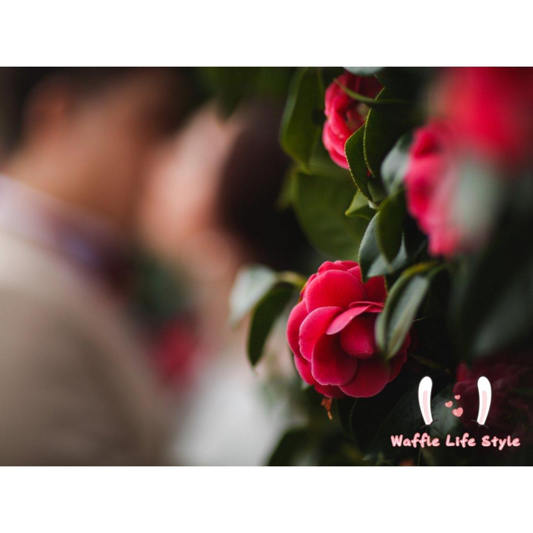 ❣ 愛情❣熬過遠距離感情走得長遠對...