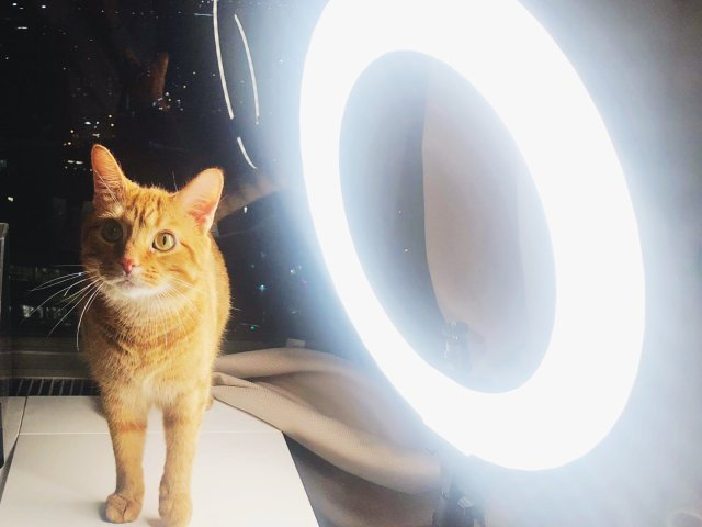 「奇妙太空历险记」燈💡