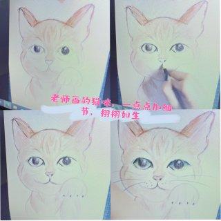 美术宝绘画🎨体验:孩子把猫猫🐱化成狐狸🦊...