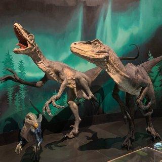 悉尼博物馆恐龙展...