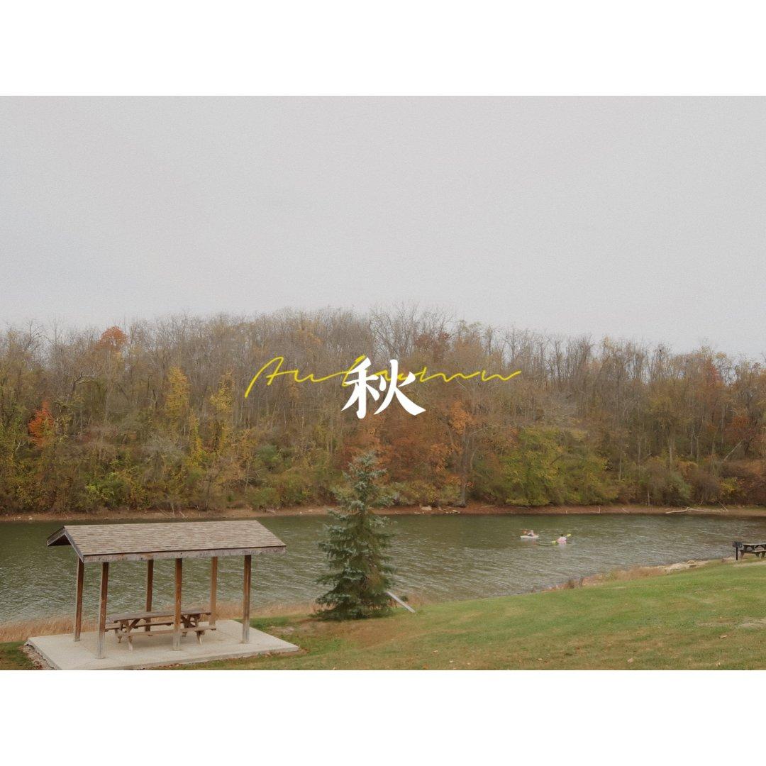 【秋🍂】 一起去看枫叶吧