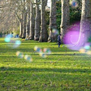 公园拍 | 伦敦周末...