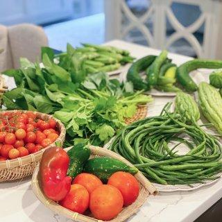 我的小菜园各种瓜都丰收啦🥰...