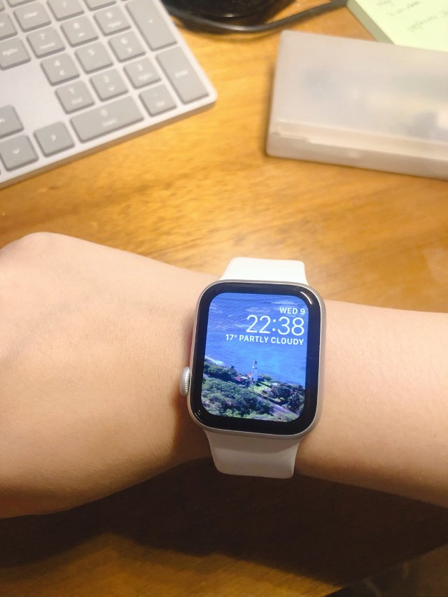 Apple Watch 5入手