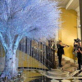 在伦敦赏圣诞树 |皇室最爱的 Clari...