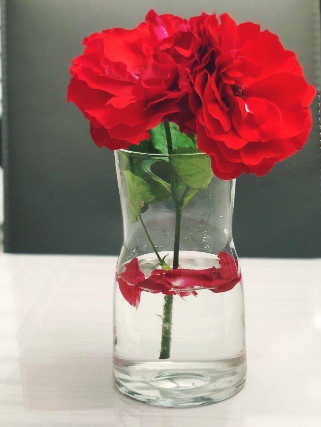 IKEA 好看的花瓶和花盆