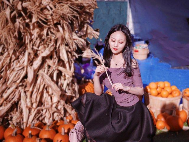 🎃 秋天的色彩 | pumpkin...