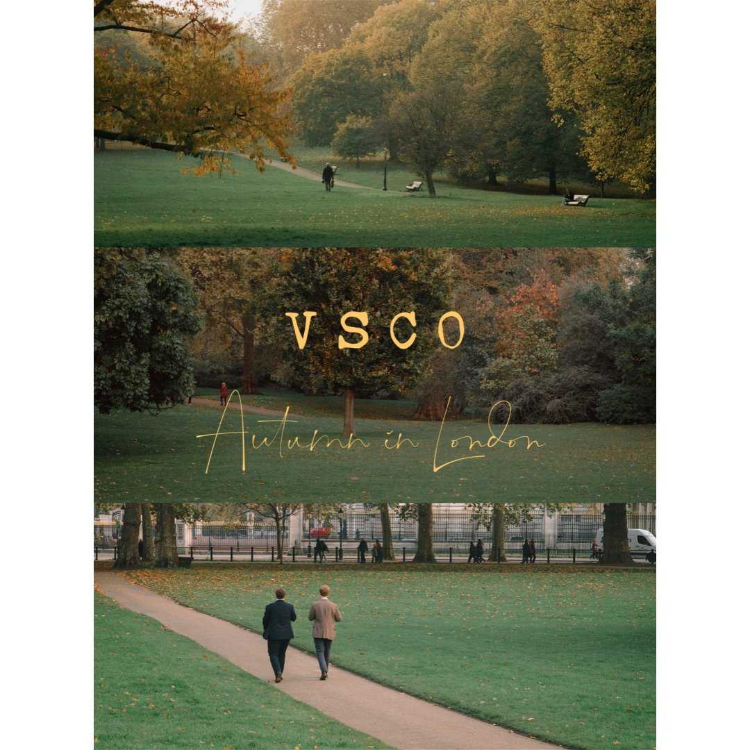 VSCO调色|伦敦秋天公园调出文艺电影感