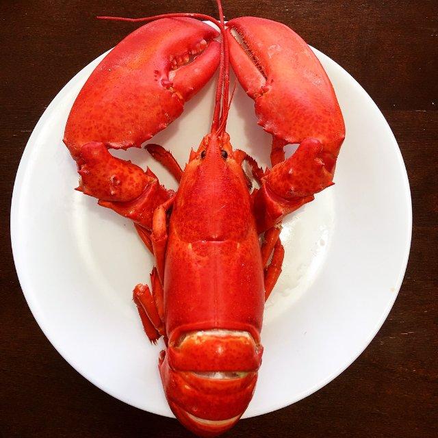 美国的龙虾确实降价了么?