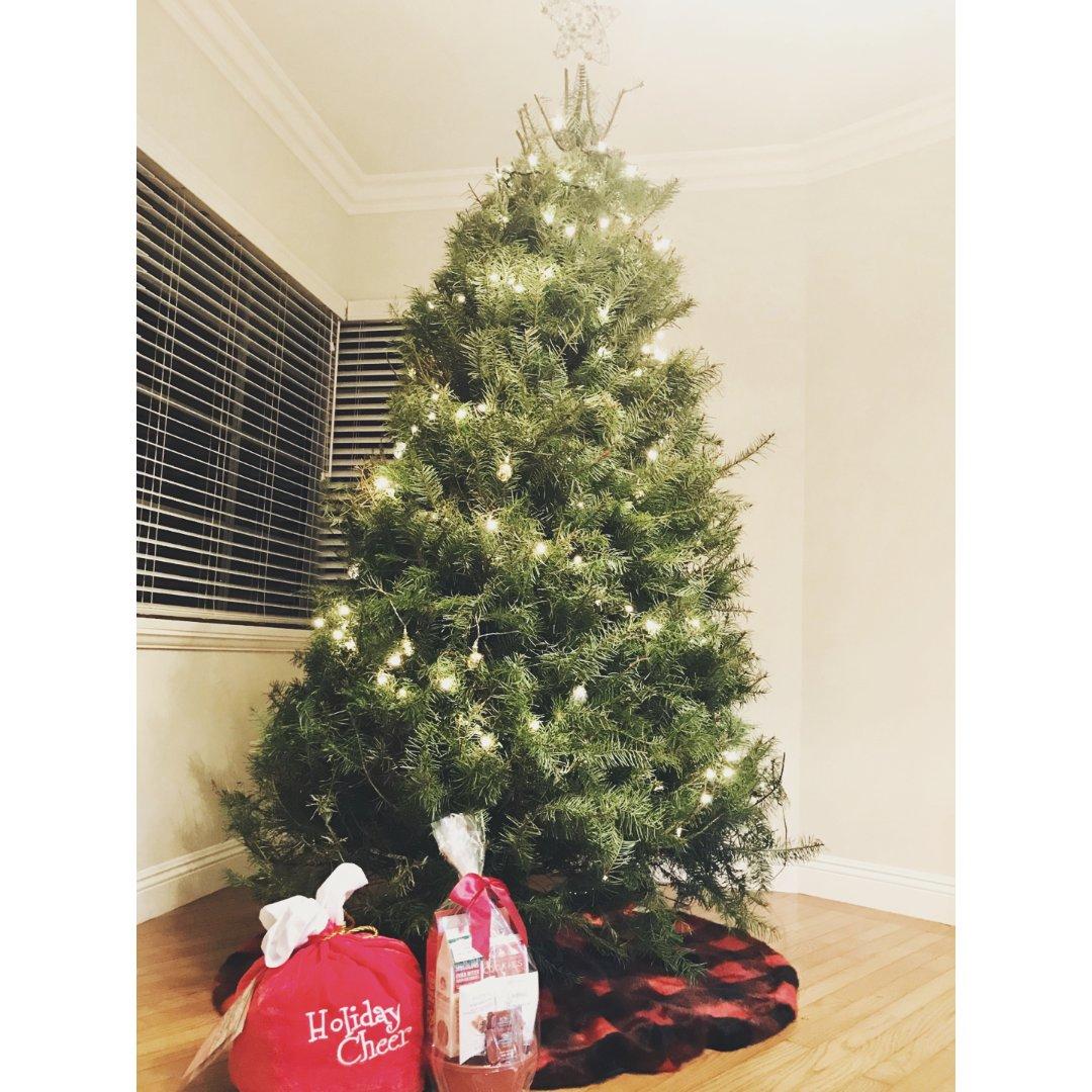 倒計時8️⃣聖誕樹亮燈儀式