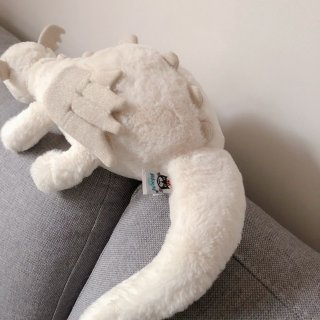 买到了爆款Jellycat雪龙❄️巨软!...