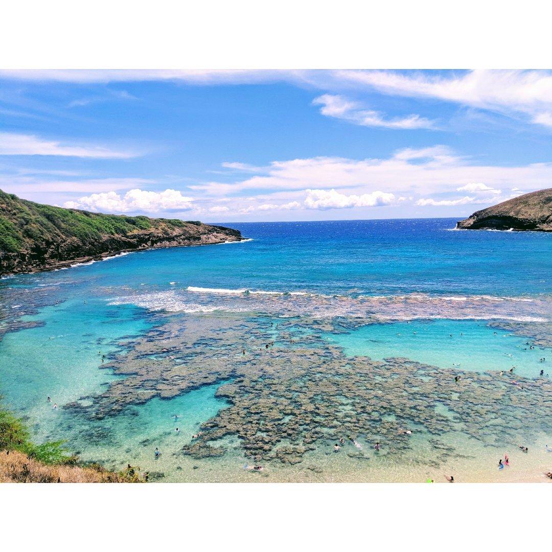 #夏威夷Oahu欧胡岛| 绝对不能...