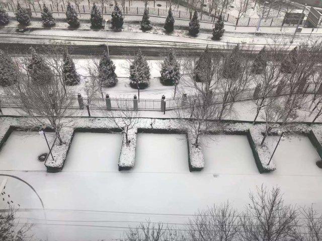 北京初雪❄️