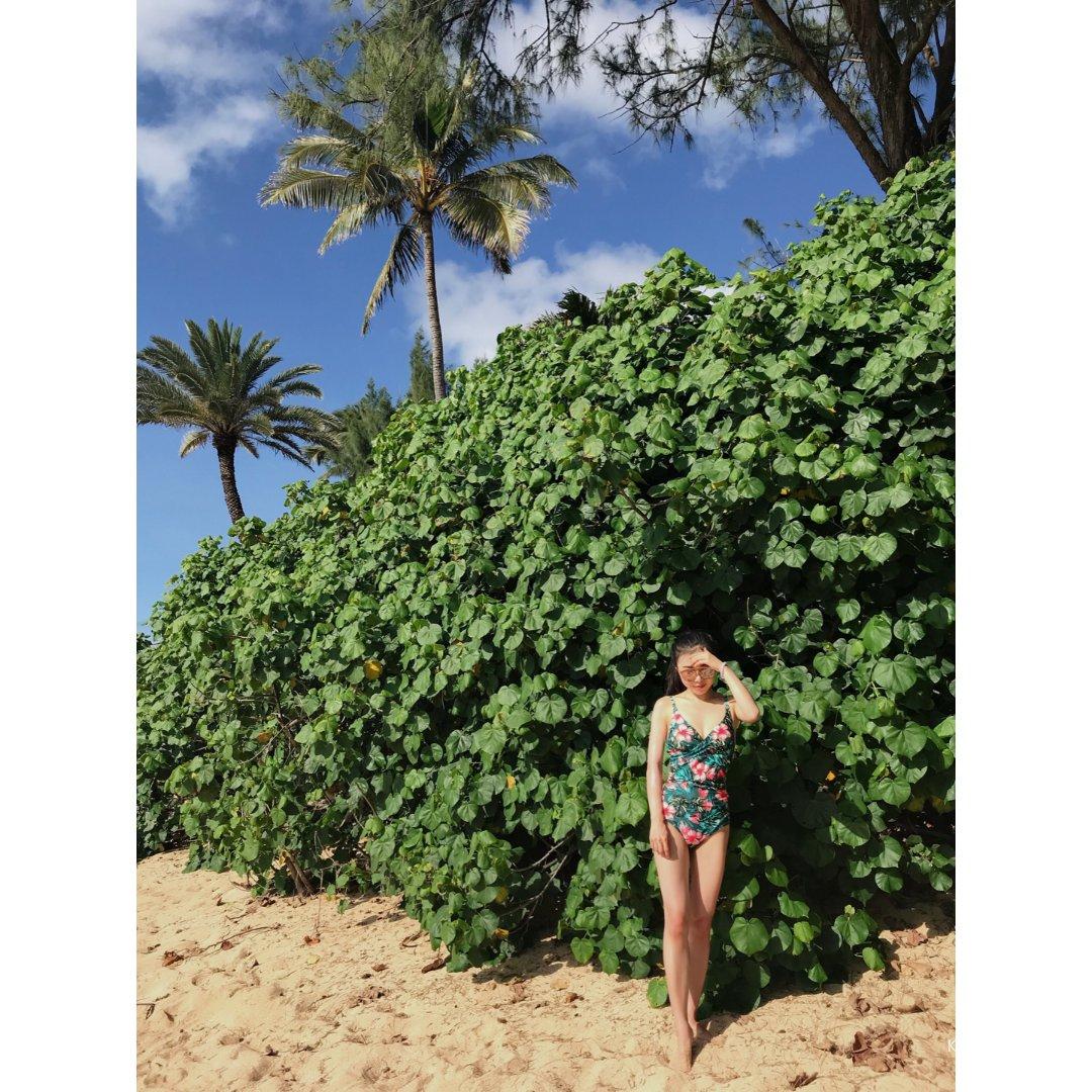 夏威夷之旅|玩不腻的海滩别错过🏖