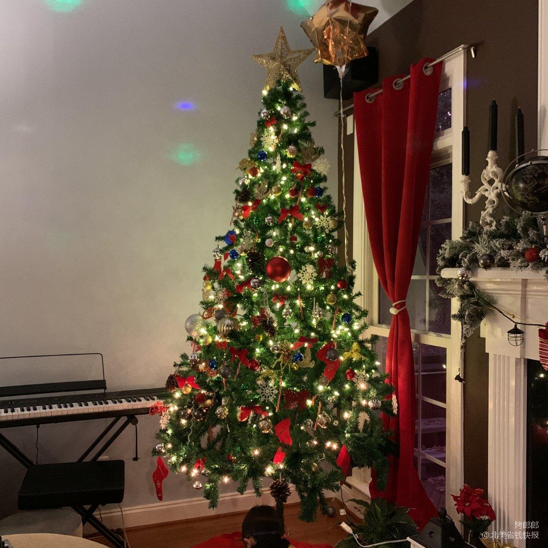 圣诞树来了