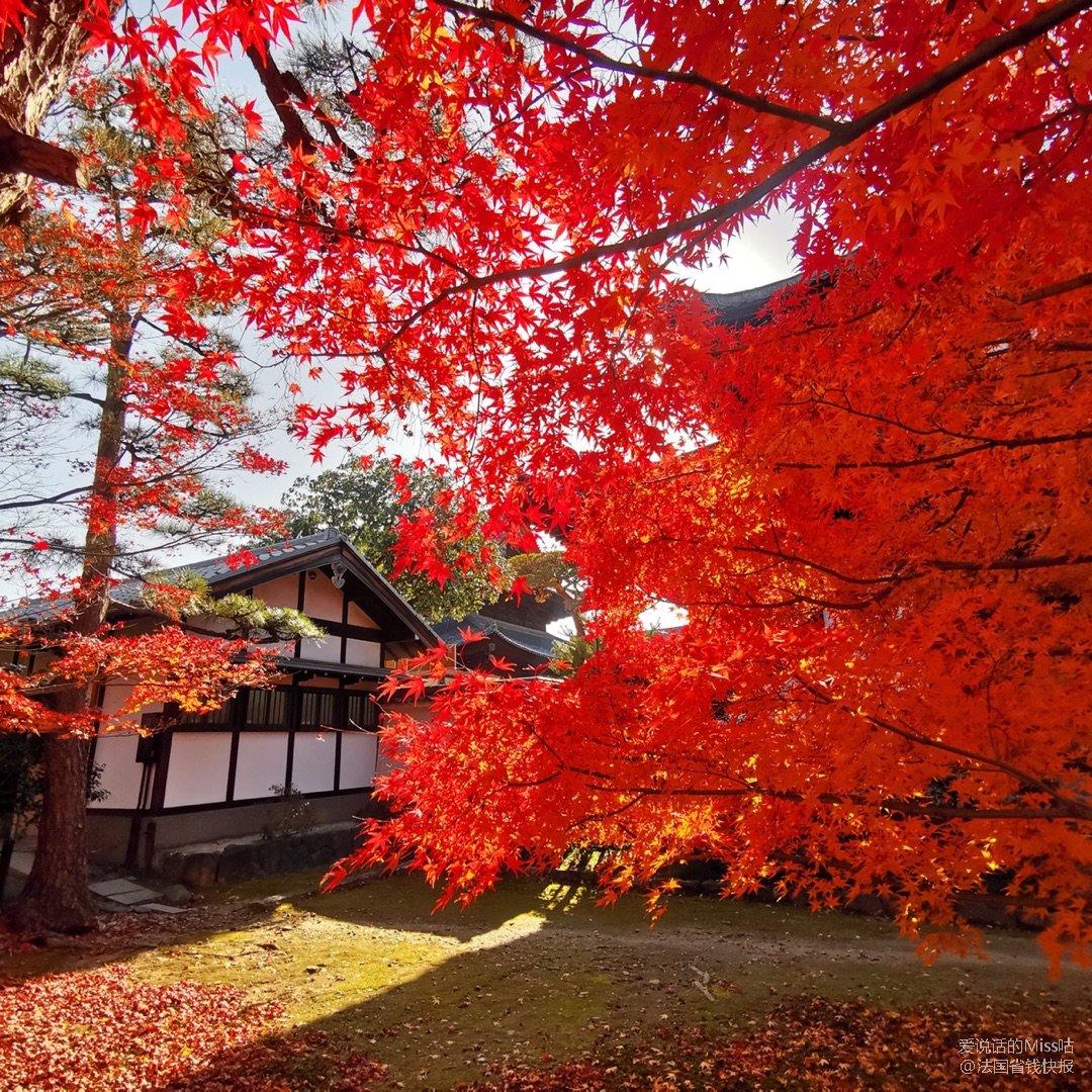 京都 名所