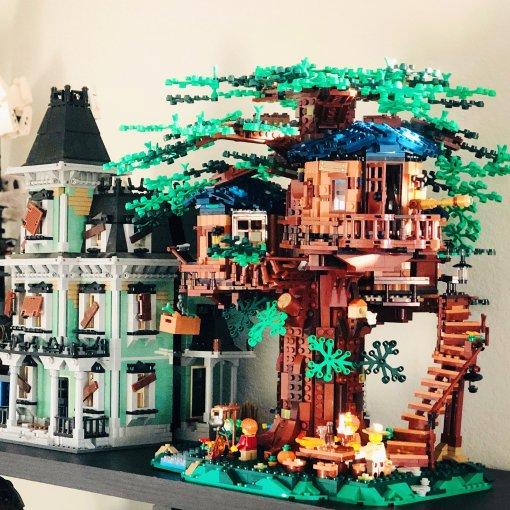 盖座树屋 童年愿望得以实现 🌲🏠