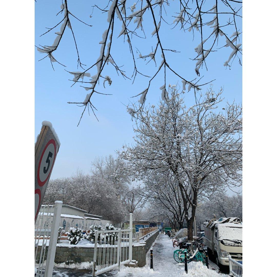 2020年的第一场雪...
