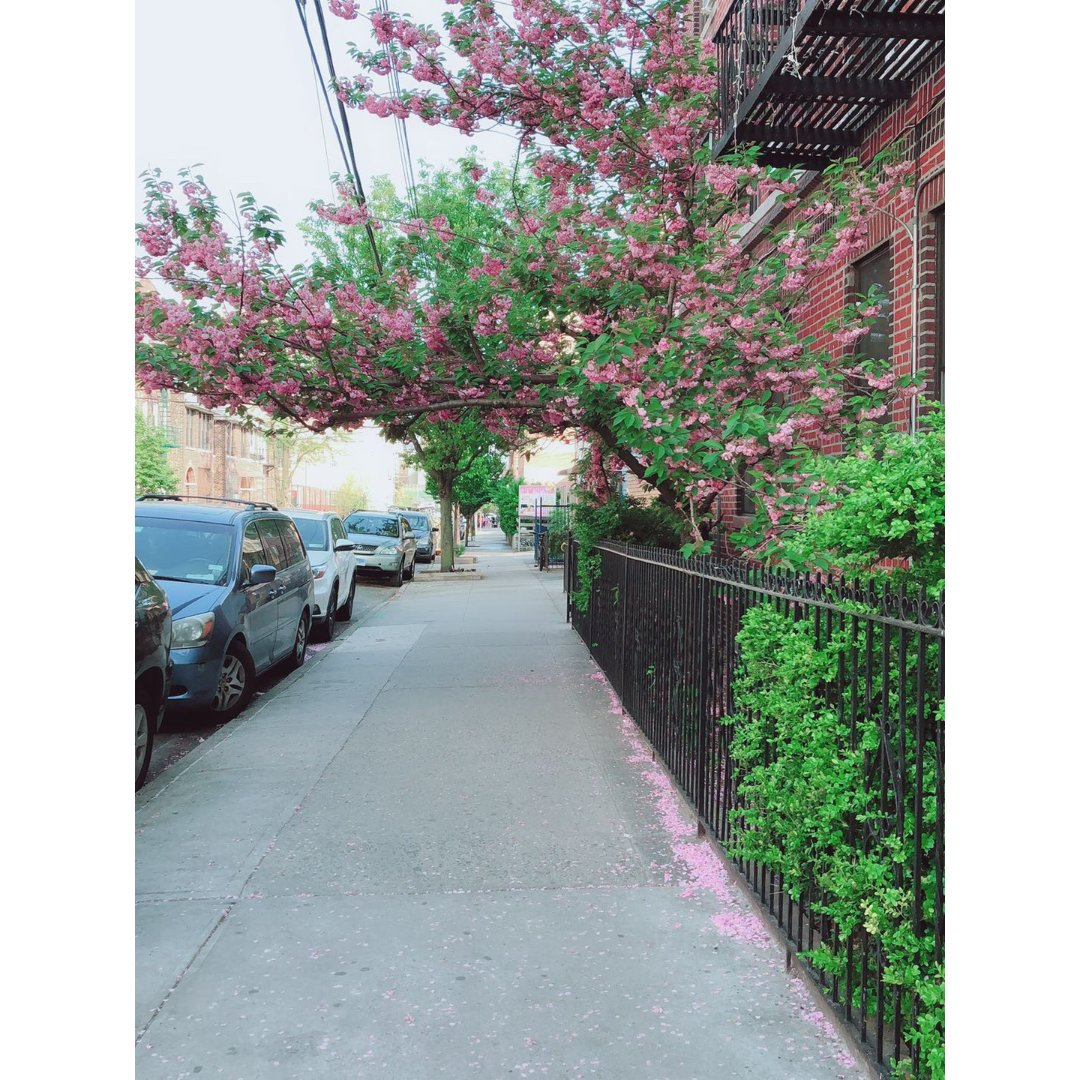 相册库存:街道的风景