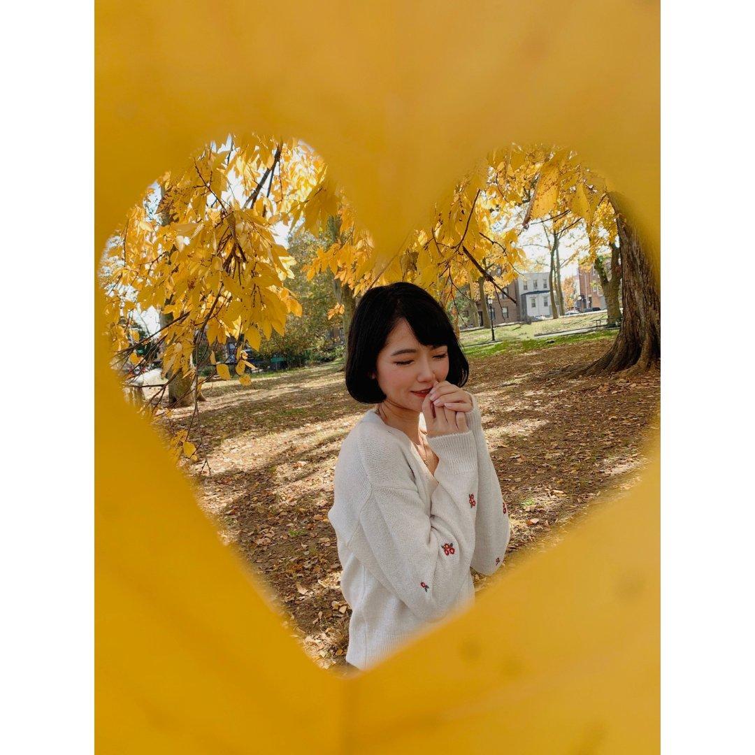 秋天|公园|📷创意拍照法|秋叶做前景拍出...