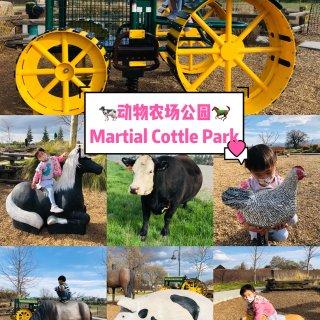 湾区遛娃|动物农场Martial Cot...