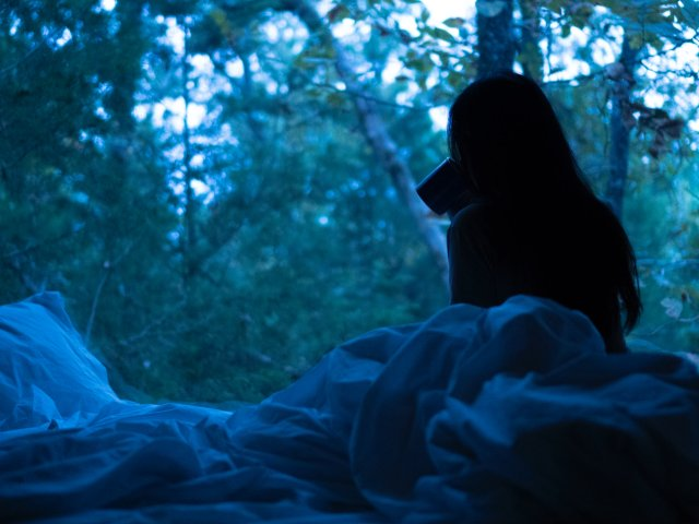 Getaway 月明星稀 清早的林...