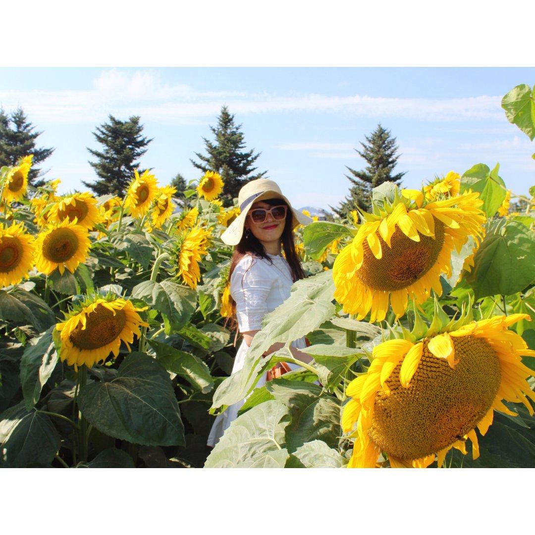 夏天,在向日葵🌻花田里尽情燃吧~🔥
