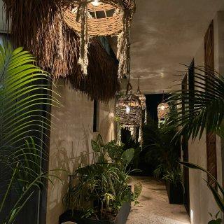 八月旅行 - 墨西哥Tulum精美酒店 ...