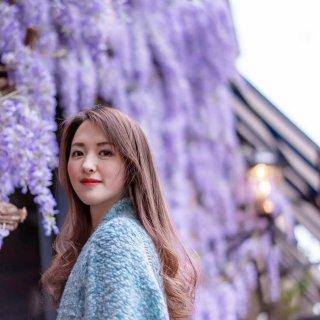 💜 紫藤花下的曼彻斯特,曼城摄影师专拍...