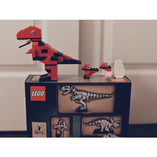 乐高21320 恐龙化石