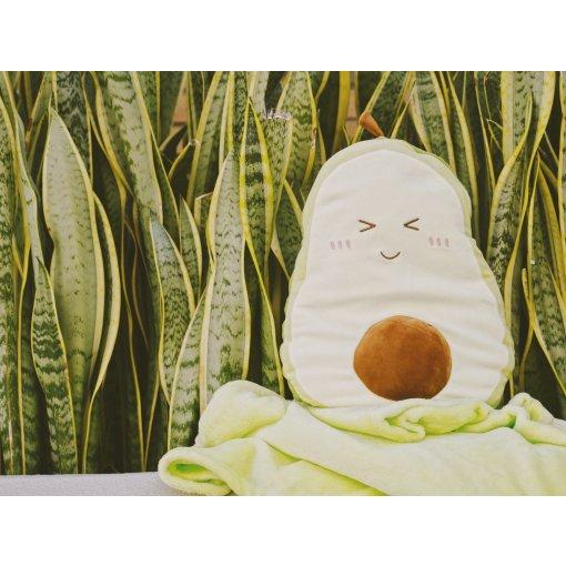 既是抱枕又是盖毯🥑可爱的牛油果