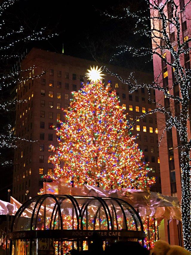 🎄🎄🎁圣诞快乐🎅🎄🎄