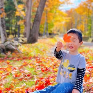 🍁走进电影画面般的Vermont红叶季...
