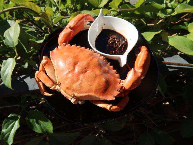 | 吃吃喝喝| 周末又是吃蟹日🦀️
