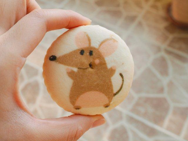稻香村鼠年限定   可可爱爱萌萌的鼠饼