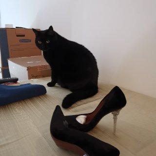 埃菲尔铁塔鞋跟 法式优雅浪漫...