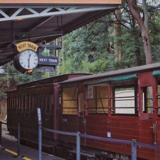 墨尔本小火车🚄...