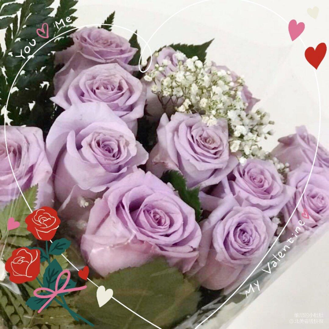 ❤️情人节家属来点特别的【紫色玫瑰花】