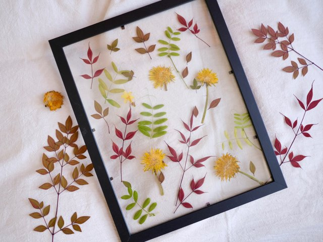 DIY植物相框