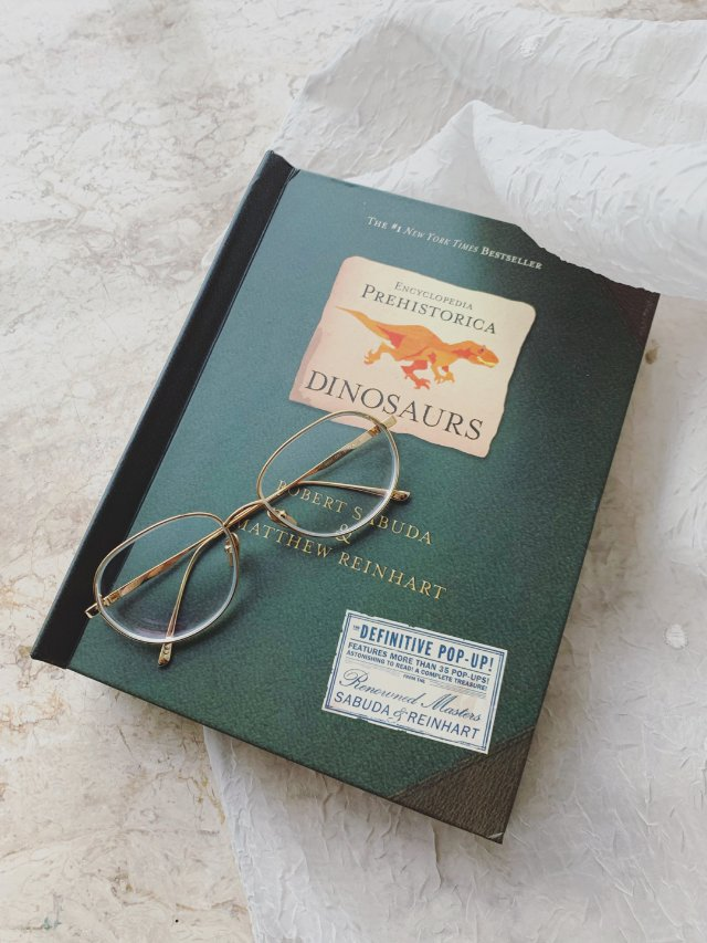 恐龙立体书🦕|男孩子们的爱