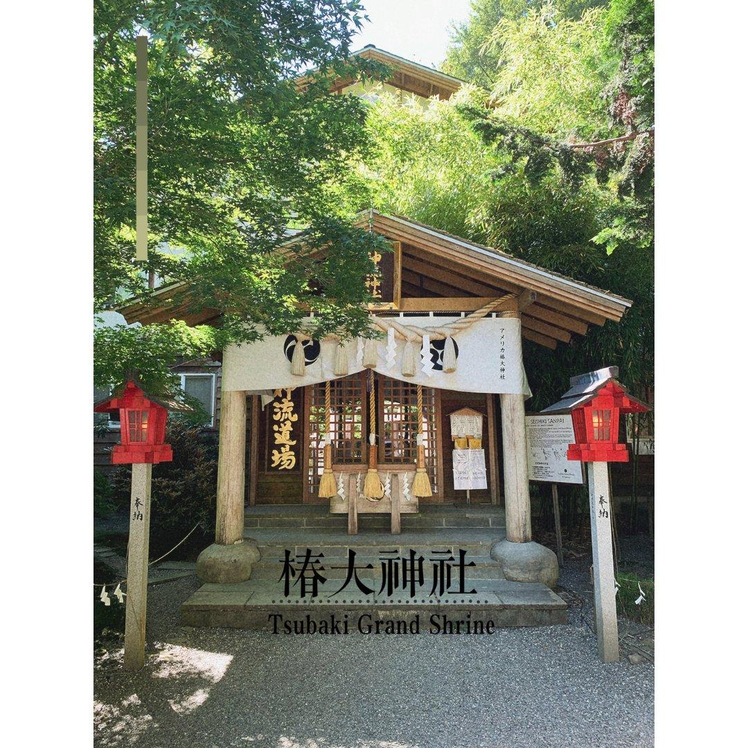 夏日游 隐藏在树林里的🇯🇵椿大神庙