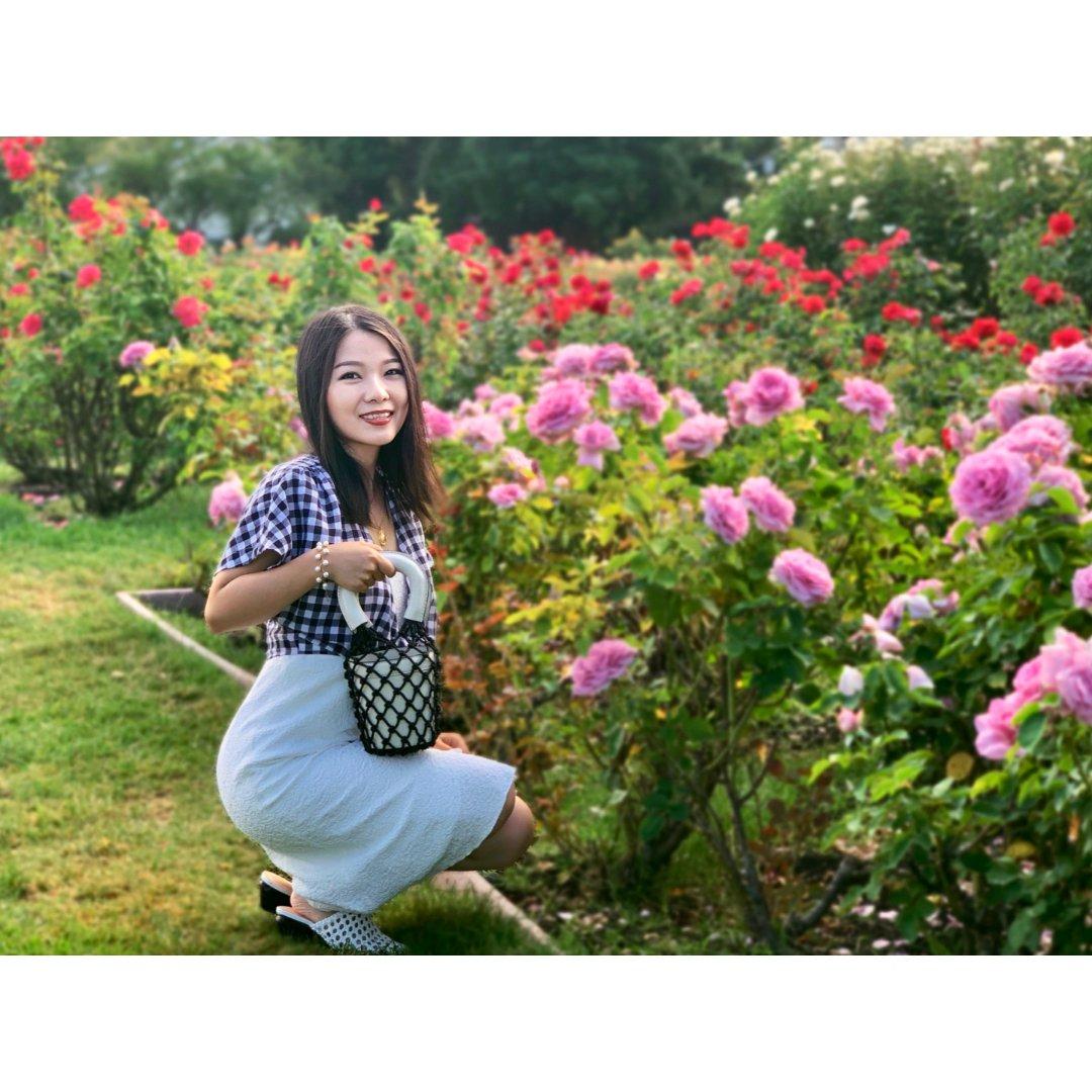 穿搭 | 夏日物语-玫瑰花园里的s...
