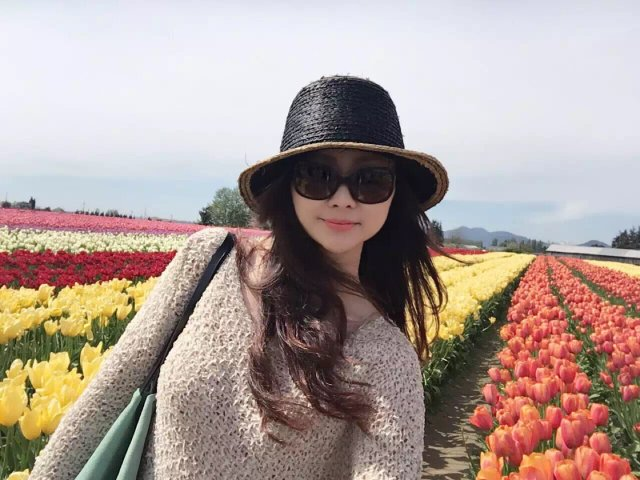 感恩节快乐|郁金香农场赏花🌷🌷🌷